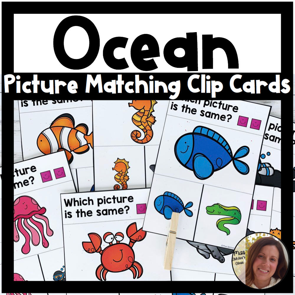 picture matching task cards ocean theme