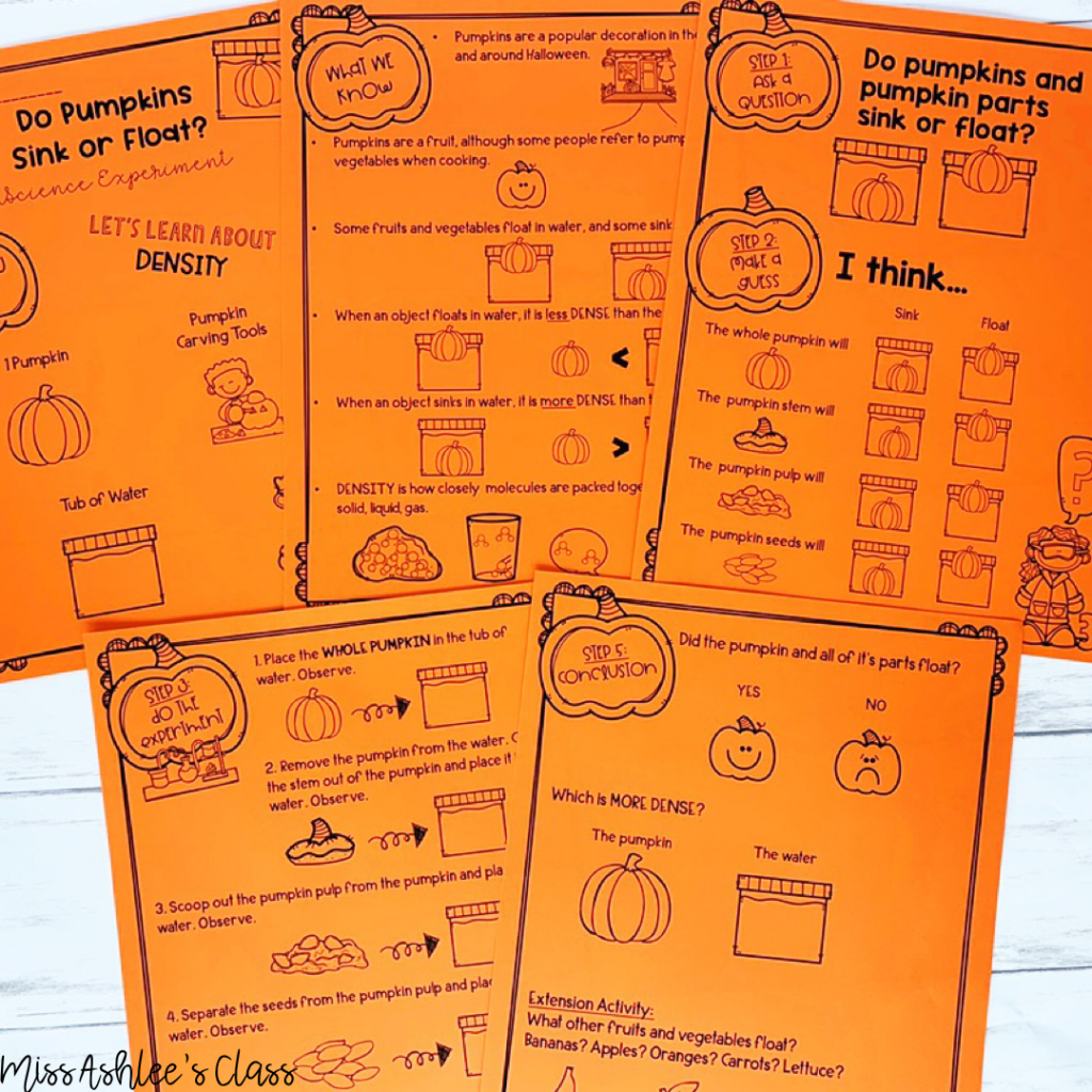 pumpkin science experiment packet