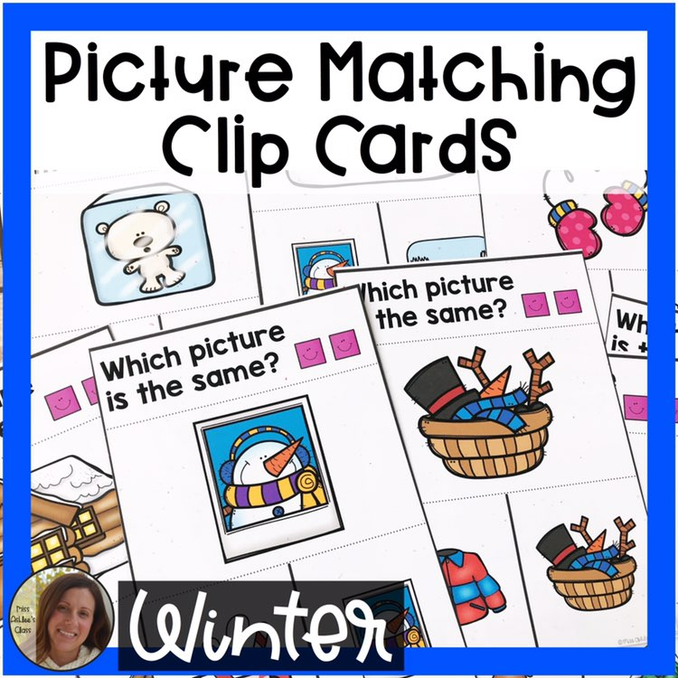 picture matching task cards Winter theme