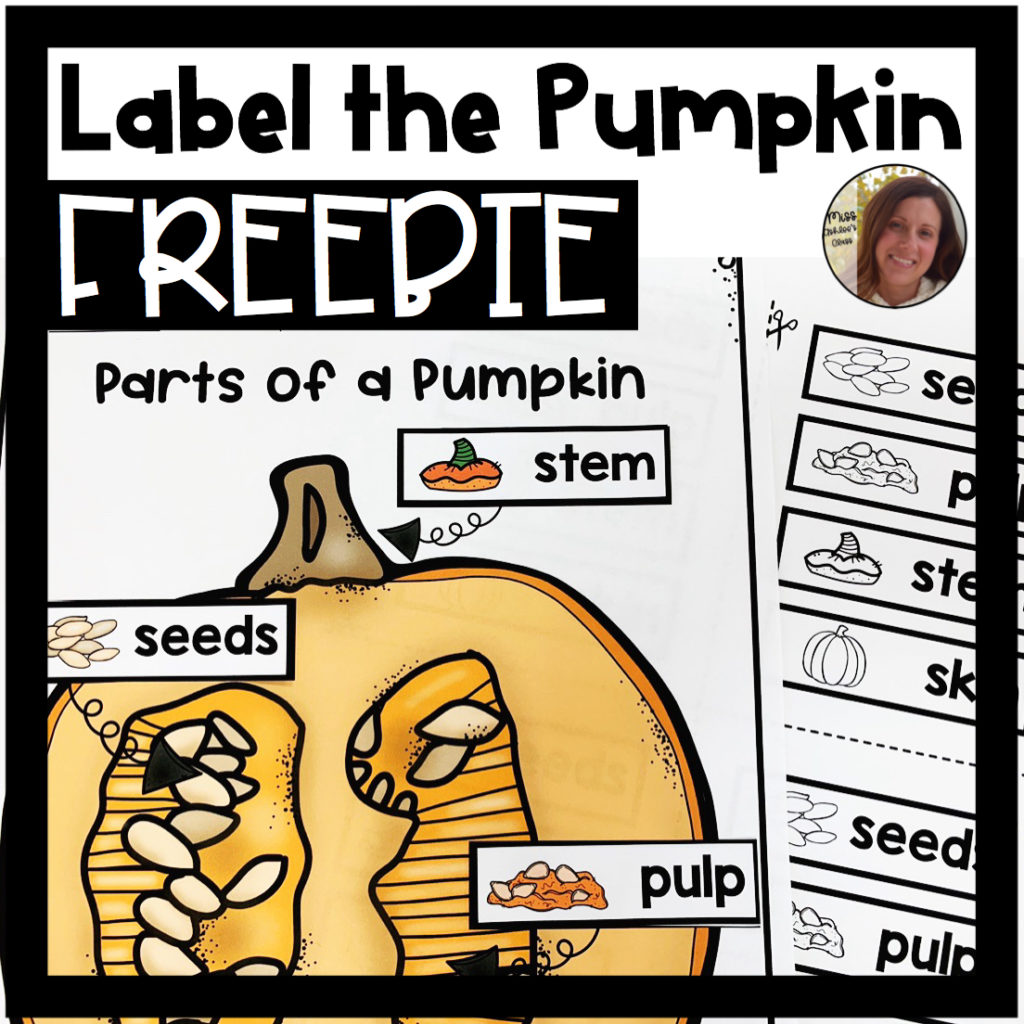 label the pumpkin worksheet